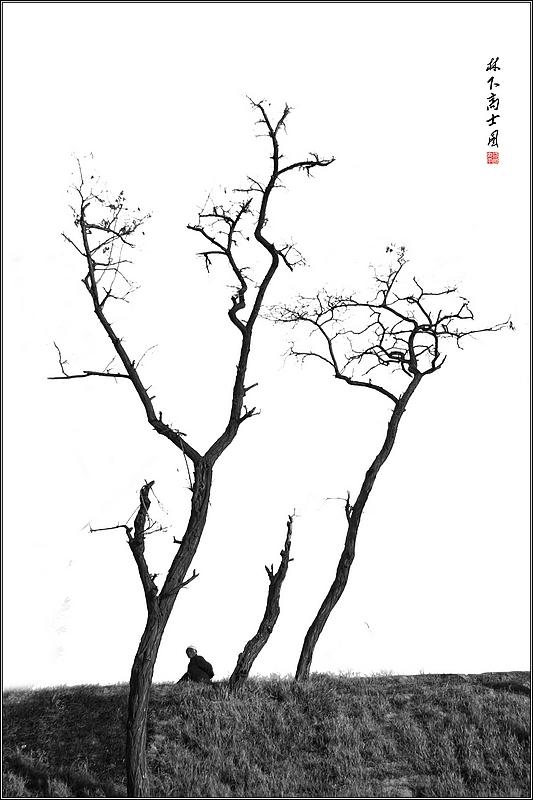 林下高士图