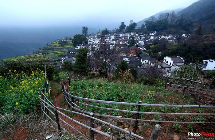 婺源踏春-----与德馨版主的中国最美乡村拍摄