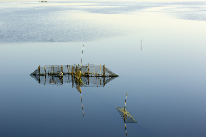 渔系列之--网