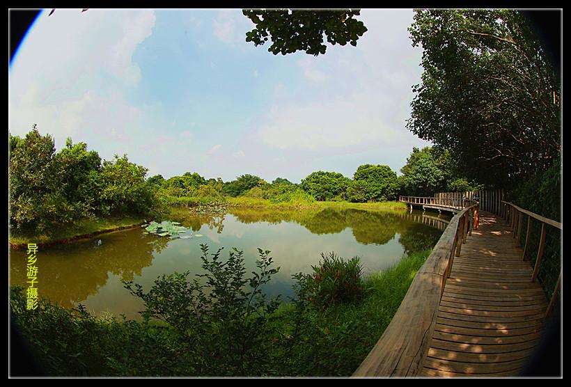 鱼眼看____香港湿地公园(原创)