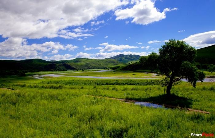 美丽中国行系列(五十六)——呼伦贝尔草原随拍
