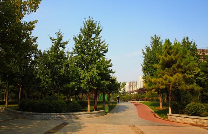 初秋·东环公园