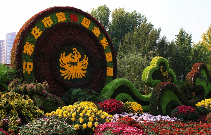金秋菊展·西清公园