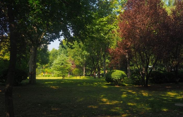 秋日·裕西公园