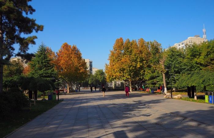 初冬·东环公园