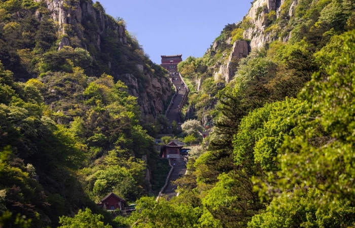 美丽中国行系列(1 Ο Ο )——东岳泰山