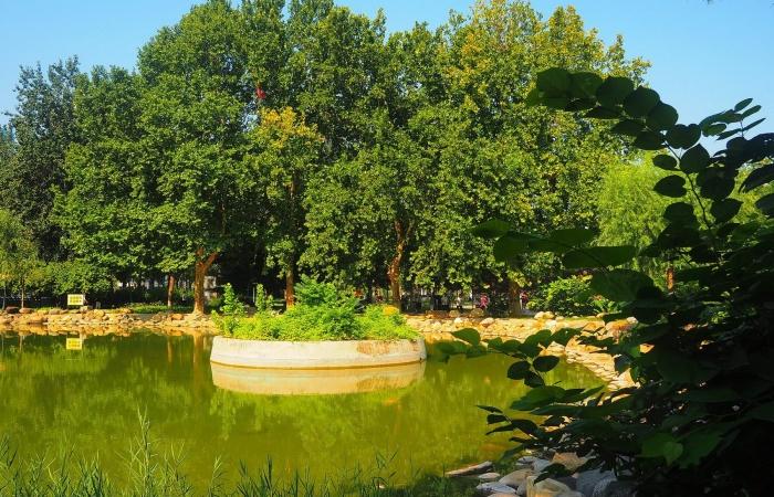 酷暑中的长安公园