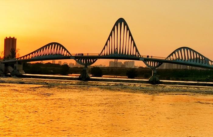 落日雁落桥(手机随拍)