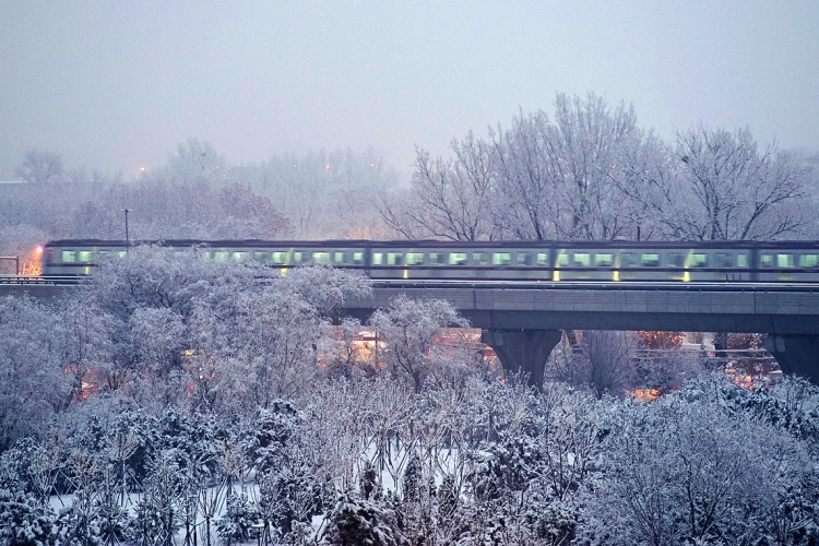 索尼微单月赛十二月主题:多彩冬季2020首场雪