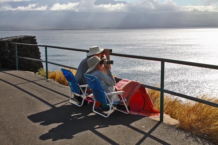 夏威夷Havaii旅游回顾-01-茂宜岛-03-whaleBeach观鲸海滩